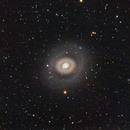 M94 Croc's Eye Galaxy,                                Jerry Macon