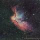 NGC 7380 / LBN 511 / Sh2-143 / Wizard Nebula,                                Ron Bokleman