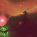 IC 434 The Horsehead Nebula,                                Greg Ray