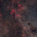 Milky Way in Cygnus,                                Valerio Pardi