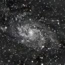 M33, C11 Hyperstar,                                morrienz