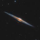 The Needel Galaxy - NGC 4565,                                Peter Komatović