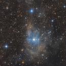 VdB 14 & 15 - Reflexion Nebulae in Camelopardalis,                                Bernhard Zimmermann