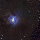 NGC7023,                                 Constantino