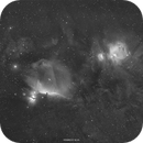 Orion Cloud Complex (Halpha),                                Henrique Silva