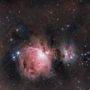 M42 - Orion Nebula,                                Michael Völker