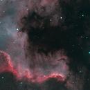 NGC7000- Gulf Region,                                Christopher