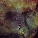 IC 1396 SHO,                                BERCHID Florent