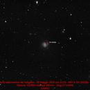 M61 & SN2020jfo,                                Gianluca Galloni