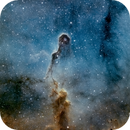 The Elephant's Trunk in IC 1396,                                stein