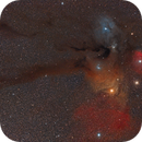 Rho Ophiuchi Molecular Cloud Complex,                                David Augros