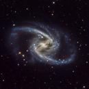 NGC 1365,                                mr1337