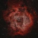 The Rosette Nebula in BiColor,                                pmneo