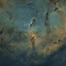 The Elephant's Trunk Nebula in Cepheus,                                Sendhil Chinnasamy