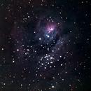 Lagoon Nebula- Test with A7III, Short exposure + High ISO.,                                AstroNoobmaster69