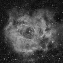 Rosette Nebula (HA narrowband),                                Michelle Bennett