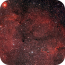 Elephant Trunk Nebula,                                Jeff McClure