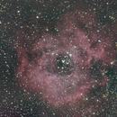 Rosette Nebula,                                Antonio Soffici