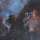 NGC7000 & Pelcan HOO,                                mackiedlm