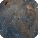 Thackeray's Globules in the  IC 2944 / 2948 Complex,                                Alex Woronow