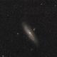 M31 - Widefield,                                Mario Gromke
