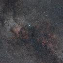 Cygnus,                                Mark L Mitchell