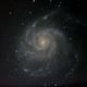 M101,                                John Schnupp