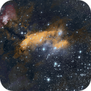 Prawn Nebula IC4628,                                Nuccini