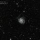 M101 Pinwheel Galaxy,                                Mazen Aoun