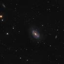 One-Armed Spiral Galaxy NGC 4725,                                Prabhu S Kutti