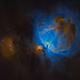Orion Nebula in SHO 2,                                Raul Diaz