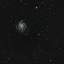 M101,                                Manuel Frattini