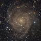 IC 342: Hidden Galaxy,                                Zhaoqi Li