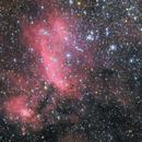 IC4628 Prawn Nebula,                                Kevin Parker