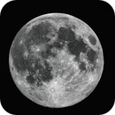 Full Moon,                                Peter Komatović