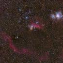 Twelve minutes of Orion,                                Die Launische Diva