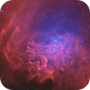 Flaming Star Nebula | IC 405 | H[HOO],                                Kevin Morefield