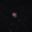 M 1 (Crab Nebula, SNR),                                Klaus Haevecker