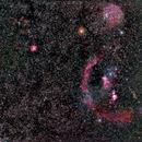 Orion Widefield,                                Jeffrey Horne