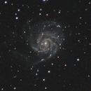 M101,                                Jan Curtis