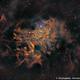 IC 405 - Flaming Star Nebula in SHO,                                Prath Pavaskar