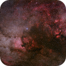 Cygnus Untracked with Canon RF 85mm f/1.2 and Canon Ra,                                Nico Carver