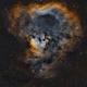Timeless Infinity ( NGC 7822 ),                                Reza Hakimi