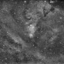 NGC 2264 and the Cone Nebula,                                John Leader