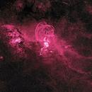 NGC 3576 (Statue of Liberty Nebula) TQA150 NB,                                Alex Woronow
