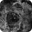 NGC2244 - Rosette - yet another project - WIP,                                VikN79
