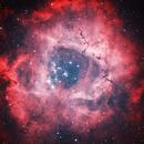 Rosette Nebula - Ha - OIII,                                Greg Polanski