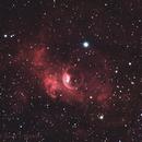 NGC 7635 Bubble Nebula,                                Dave Watkins