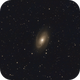 M81,                                PhotonCollector
