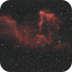 Y Cas  nebula in HOO,                                Emil Andronic